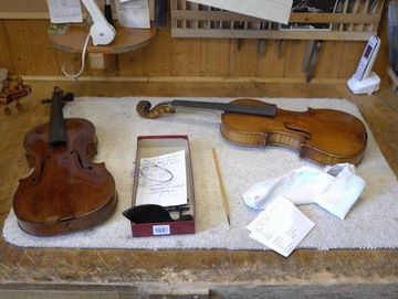 kaspar-maurer-stringed-instruments